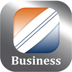 Business Mobile Logo